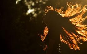 Картинка девушка, волосы, силуэт
