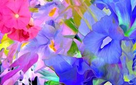 Картинка линии, лепестки, краски, рендеринг, цветы, штрих