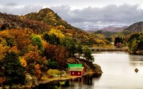 Картинка осень, лес, деревья, горы, река, камни, берег