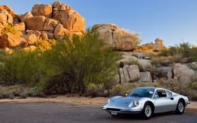 Картинка скалы, небо, солнце, машина, серебряный, Ferrari, деревья