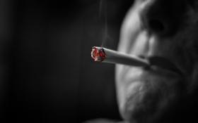 Обои фон, дым, сигарета