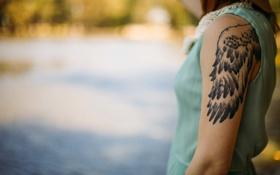 Картинка рука, крыло, тату, татуировка