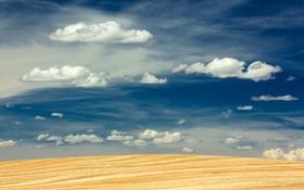 Картинка небо, облака, поля, урожай, фермы