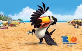 Картинка птица, пляж, мультфильм, песок, тукан, рио, танец
