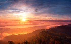 Обои лес, солнце, облака, туман, река, рассвет, холмы