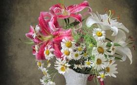 Обои лилии, ромашки, букет, лепестки, кувшин