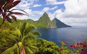Картинка горы, природа, тропики, океан, побережье