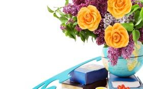 Обои цветы, розы, lilac