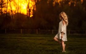 Обои поле, небо, девушка, закат, Sunset