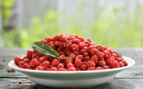 Картинка лето, природа, ягоды, обои, еда, земляника, вкуснятина