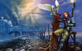 Картинка дорога, девушка, тучи, камни, оружие, дерево, сова