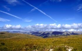 Картинка небо, трава, облака, цветы, холмы