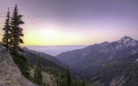 Картинка рассвет, восход, Olympic National Park, штат Вашингтон, Национальный парк Олимпик, панорама, Hurricane Ridge