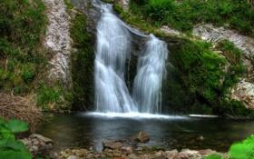 Обои мох, Германия, Allerheiligen, природа, водопад, фото