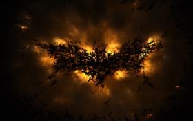 Картинка летучая мышь, темный рыцарь, dark knight