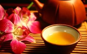Обои чайник, еда, чашка, орхидея, цветы