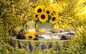 Обои подсолнухи, цветы, желтый, природа, стол, сок, виноград