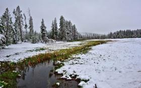 Обои осень, пейзаж, природа, река