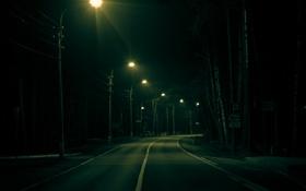 Обои дорога, деревья, разметка, фонари