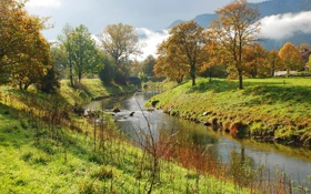 Картинка осень, небо, трава, деревья, пейзаж, природа, река