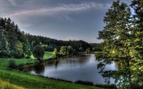 Картинка прирада, водоём, берег, деревья