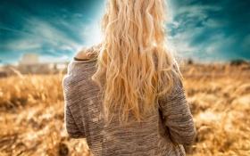 Обои поле, небо, девушка, волосы, спина, арт