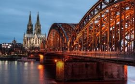 Обои мост, река, Германия, Germany, Кёльн, Cologne, Рейн