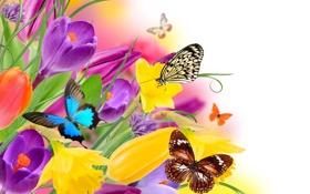 Картинка коллаж, крокус, природа, бабочка, крылья, цветы