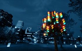 Обои светит, желтый, светофор, ночь, улица, площадь, город