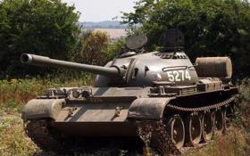 Обои оружие, танк, T54