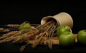 Картинка колосья, яблоки, ваза
