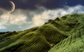 Картинка поле, небо, трава, природа, полосы, луна, холм