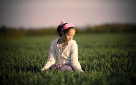 Обои небо, трава, взгляд, солнце, свет, радость, тепло