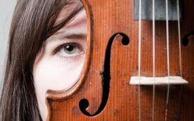 Обои девушка, макро, скрипка