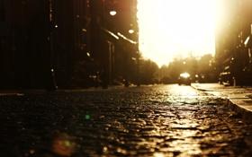 Обои улица, дорога, солнце