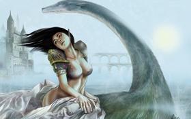 Обои грудь, девушка, мост, озеро, замок, ветер, существо