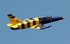 Картинка полёт, самолёт, «Альбатрос», Albatros, учебно-боевой, Aero L-39C