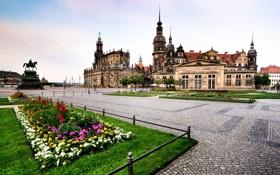 Обои цветы, Германия, Дрезден, памятник, церковь, клумба, Germany