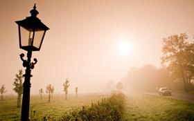 Обои дорога, поле, фонарь