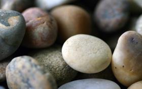 Картинка макро, галька, камни