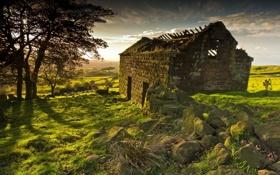 Картинка поле, пейзаж, дом