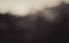 Обои Дождь, Капли, Стекло