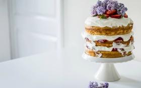 Картинка цветы, клубника, торт, крем, сирень, коржи