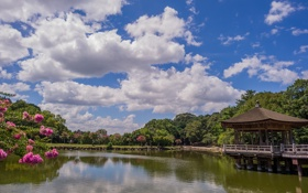 Обои облака, деревья, пруд, Japan, беседка, павильон, Ukimido Pavilion