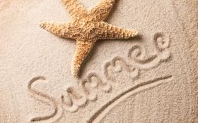Обои песок, пляж, beach, starfish, summer, морская звезда, sand