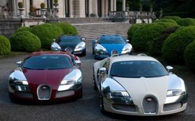 Картинка Bugatti Veyron, четыре, Centenaire, суперкары