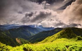 Картинка лес, облака, горы, тучи, растительность