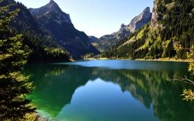 Обои лес, небо, горы, озеро, отражение