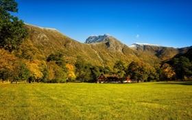 Картинка лес, осень, трава, дом., поляна, деревья, водопад