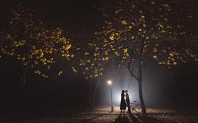 Картинка любовь, ночь, парк